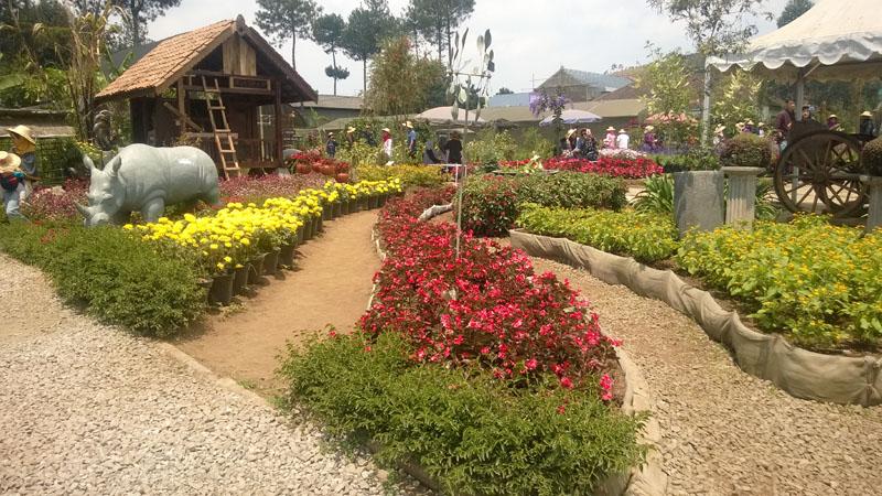 Taman Begonia
