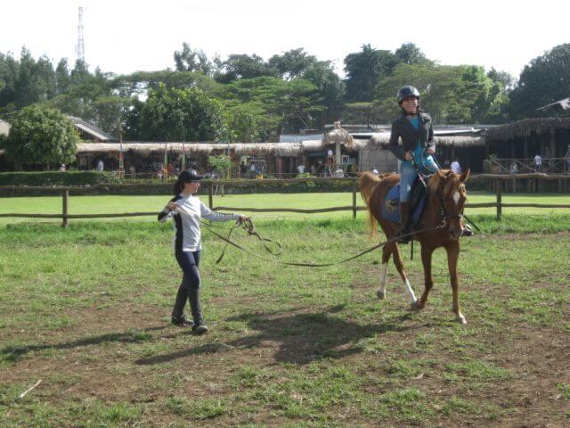 berlatih kuda